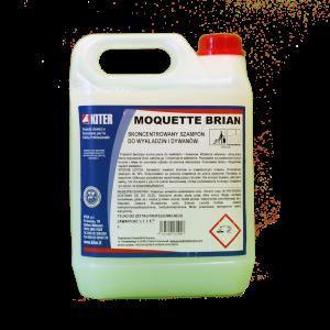 MOQUETTE BRAIN